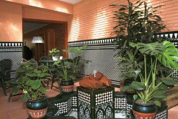 BEST WESTERN HOTEL SALOBREÑA Salobrena